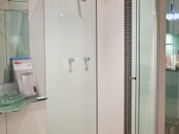 Another Magnificent Shower Screen Example